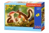 Puzzle Castorland Squirrel's Forest Life 260 dielikov