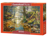 Puzzle Castorland Reminiscence of the Autumn Forest 2000 Dielikov