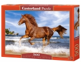Castorland Puzzle Horse on the Beach 500 Dielikov