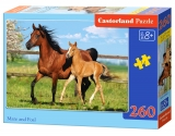 Puzzle Castorland Mare and Foal 260 dielikov