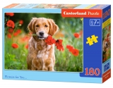 Castorland Puzzle Flowers for You… 180 dielikov
