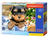 Castorland Puzzle Puppy on a Picnic 300 dielikov