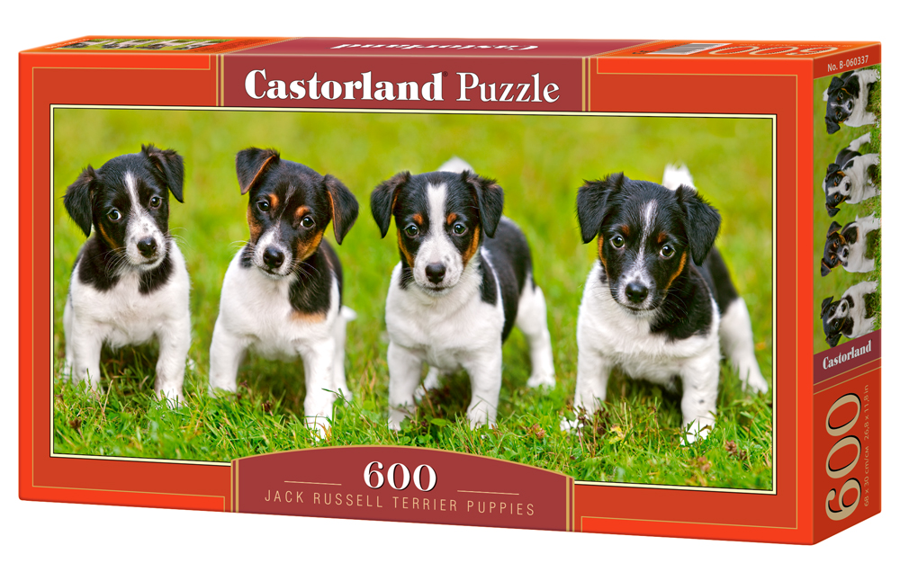 Castorland Puzzle Jack Russell Terrier Puppies 600 Dielikov