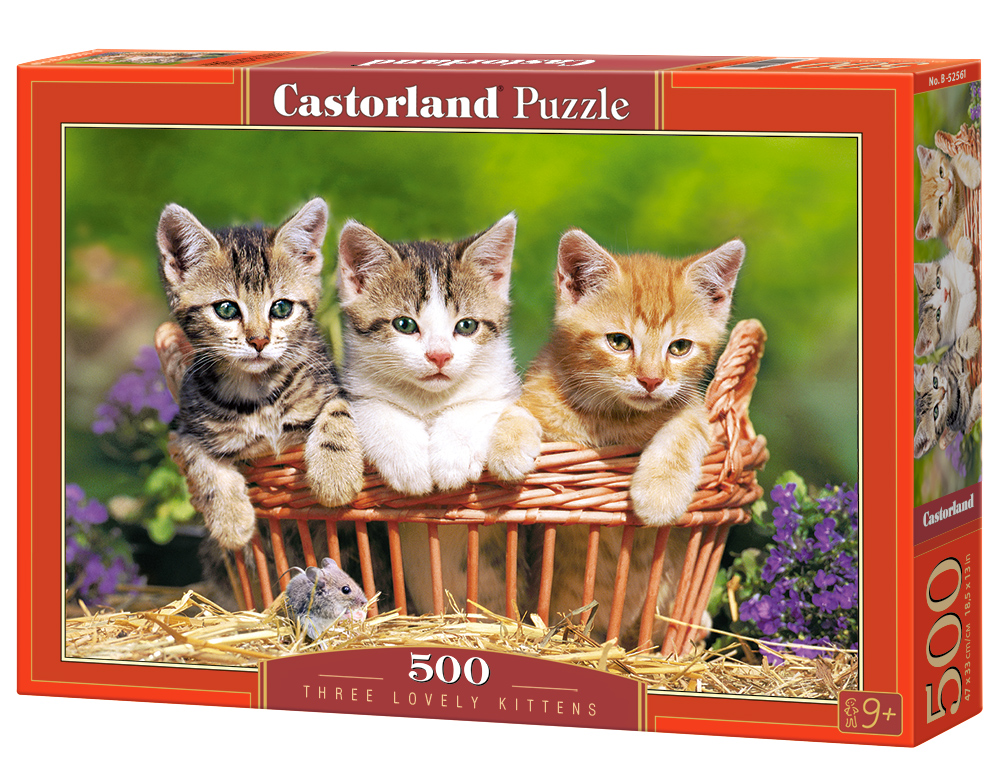 Castorland Puzzle Three Lovely Kittens 500 Dielikov