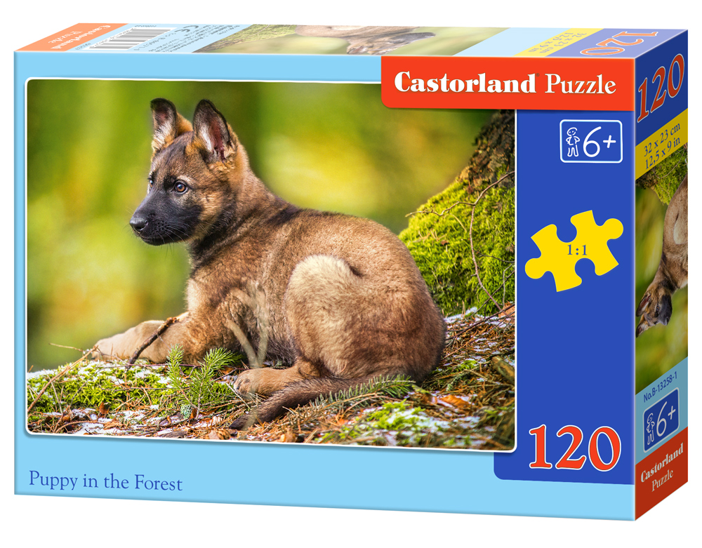 Castorland Puzzle Puppy in the Forest 120 Dielikov