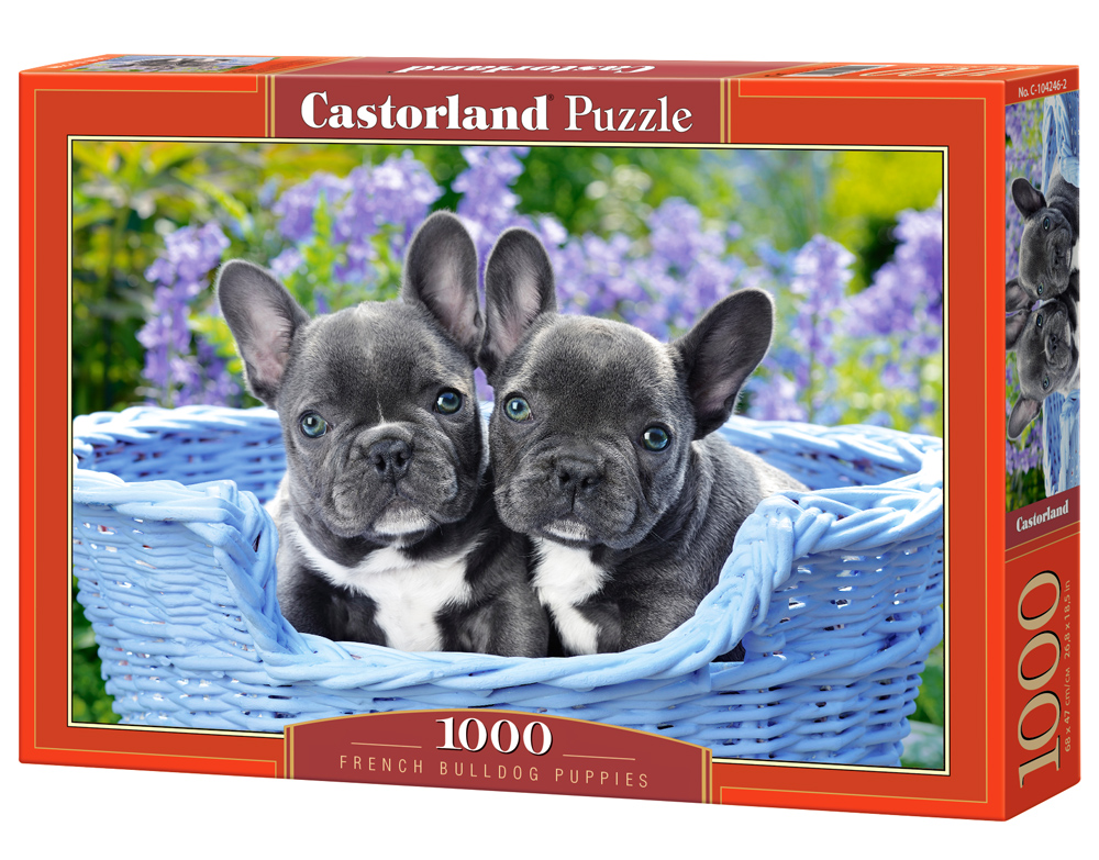 Castorland Puzzle French Bulldog Puppies 1000 Dielikov