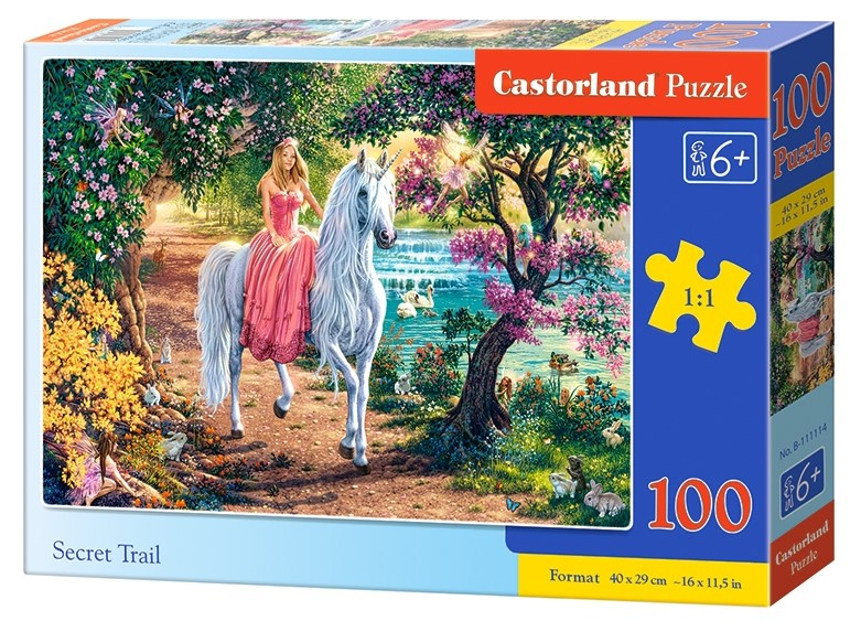 Puzzle Castorland Secret Trail 100 DIelikov
