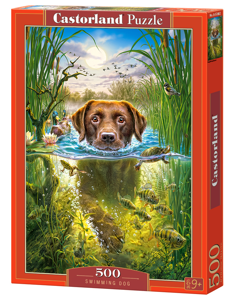 Castorland Puzzle Swimming Dog 500 Dielikov