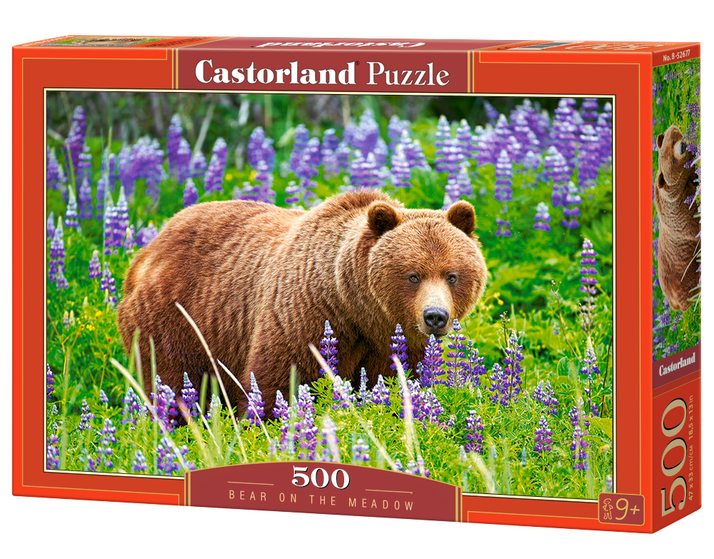 Castorland Puzzle Bear on the Meadow 500 Dielikov