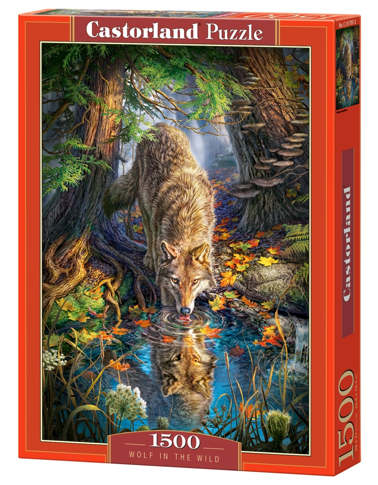 Puzzle Castorland Wolf in the Wild 1500 Dielikov