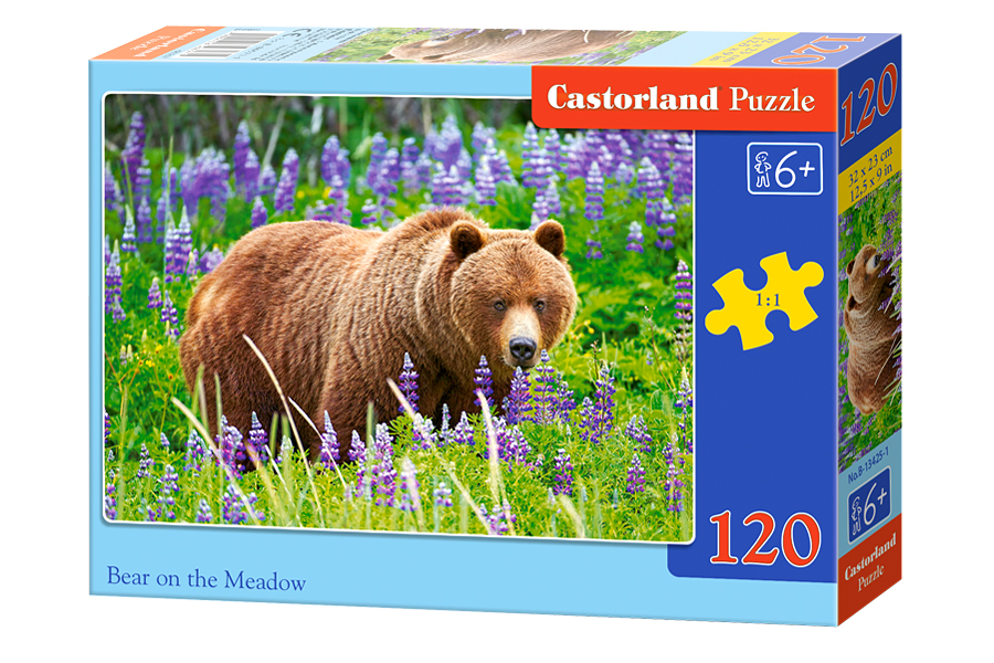 Puzzle Castorland Bear on the Meadow 120 Dielikov