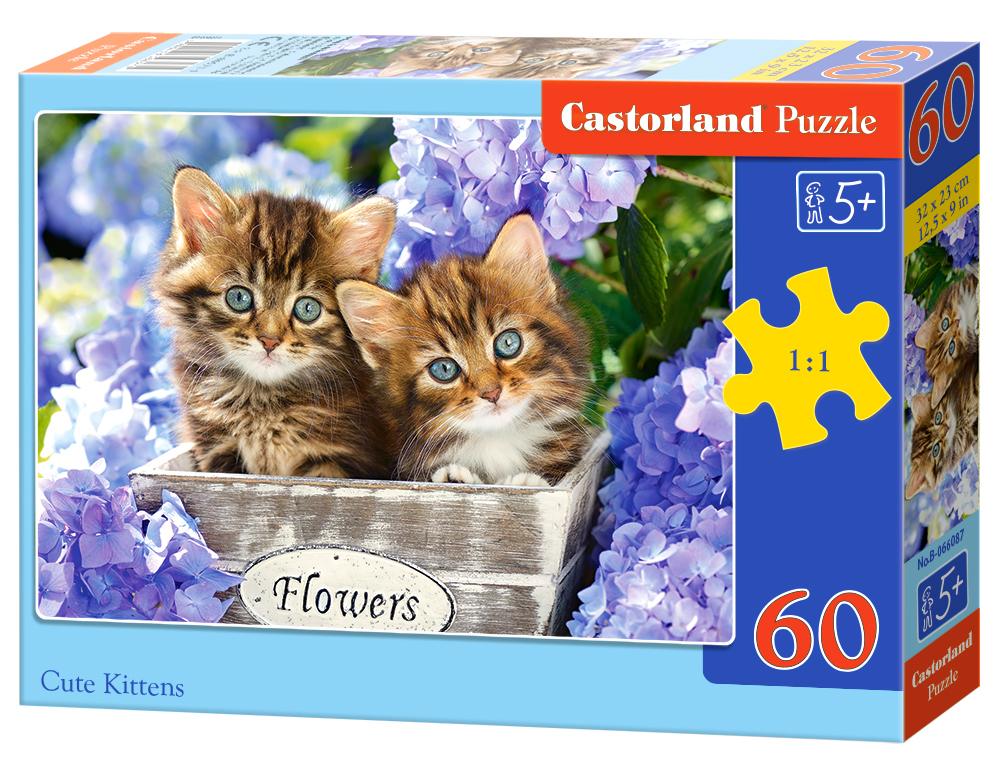 Puzzle Castorland Cute Kittens 60 Dielikov